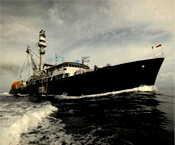 Are there any vessels Already Fishing for MSC Skipjack tuna?